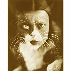 Quality digital print of a vintage photograph -Wanda Wulz, 'Io + Gatto' 1932. Sepia Tone 11x14 inches - Luster Finish