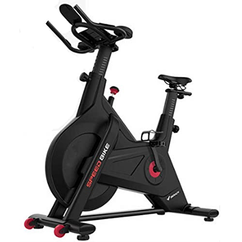 Cyclette per Ciclismo Indoor, Tapis roulant Silenzioso Sedile Regolabile 10KG Volano Magnetico Esterno a Due Vie Sensori di frequenza cardiaca, Silenzioso