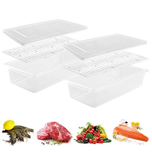 JRing Kühlschrank Vorratsbehälter mit Deckel Gefrierschrank Lebensmittel Aufbewahrungsbox praktischer Kühlschrank Organizer Box aus Kunststoff für Home Küche Restaurant (2 Stück)