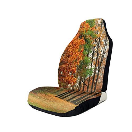 GUUi stoelhoezen auto beschermer auto mat, bewolkt bewolkt bewolkt dag in september struiken dennen stoep in het park bos, passen de meeste auto's, sedan, vrachtwagen, SUV 2 PCS Meerkleurig