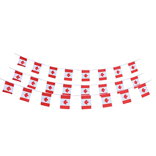 10m Canadian Country Flag String Bunting Banner Garland Outdoor Garden Decor Pack of 30Pcs