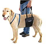 GINGERLEAD Dog Support & Rehab Sling Harnesses – Padded Lifting Aid with Leash for Comfort & Control to Assist Old / Disabled Pets, Safely Recover from Knee / TPLO, Hip or Back Surgery. Made in U.S.A.