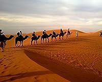 数字で描くアクリル絵の具の色原稿ラクダキャラバン砂漠サファリス砂丘Diy数字で描くデジタル絵画現代アートクリスマスの誕生日の家の装飾 カスタマイズ可能 40x50cm DIYフレーム