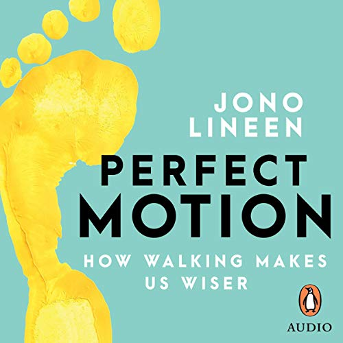 Perfect Motion audiobook cover art