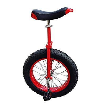 """YYAO 24"""" Wheel Unicycle Mountain Fat Tire (24"""" X 4"""") with Alloy Rim,Red,24inch"""