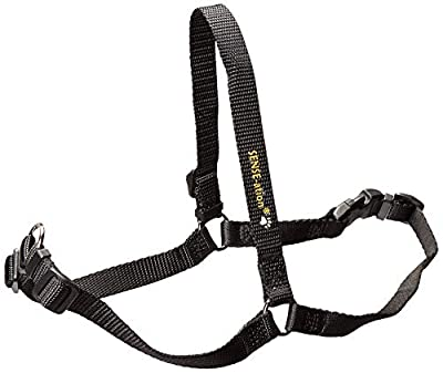 SENSE-ible No-Pull Dog Harness