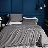JELLYMONI White 100% Egyptian Cotton Duvet Cover Set,3 Piece Luxury Soft...