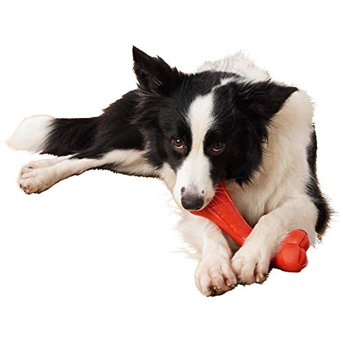 Hond kauwen speelgoed, Indestructible Pet Chew Toys Bone Honden van het Puppy Medium Large,S