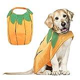 VIKEDI Halloween Kostüm Hund, Halloween Kürbis Kostüme für Hunde, Haustier Hunde Halloween...
