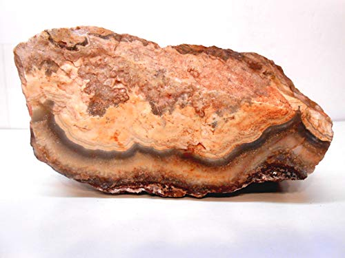 Rockhound's 1st Choice Flor de Durazno Agate (Flower of Peach) Lace Agate Rough Specimen #3 for Exhibit or Slabs & Cabs