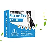 SEGMINISMART Collar Antiparasitos para Perro,Collar para Control de pulgas y garrapatas,Collar antipulgas y garrapatas para Perros y Gatos,Tamaño Ajustable e Impermeable