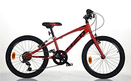 DINO BIKES Bicicletta 20 Pollici MTB Mountain Bike con Cambio 6 Marce
