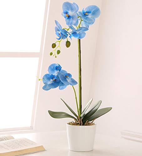 ENCOFT Kunstblumen orchideen Kunstpflanze Künstliche Blumen aus Eva Keramik Wohndeko Kunstbulme mit Übertopf Garten Balkon Wohnzimmer Hochzeit (Blau, 55CM)