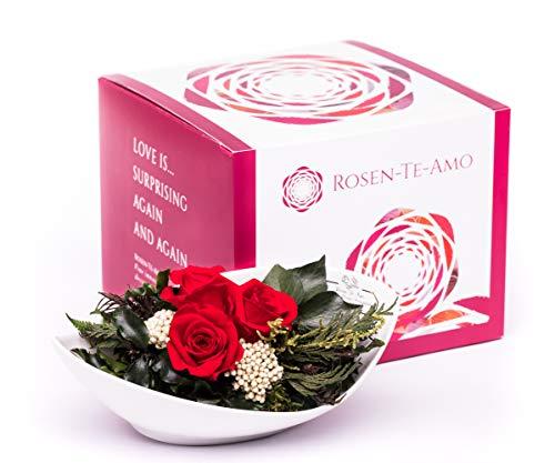 Rosen-Te-Amo, Blumenstrauß - duftende konservierte ewige Rosen rot in Vase handgefertigt mit echtem Bindegrün in feiner Geschenk-Box (neu). Infinity Rosen: Geschenke für Frauen & Deko Wohn-Zimmer