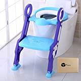 Potty Training Seat With Stool