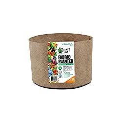 Smart Pots Smart Pot Soft-Sided Container