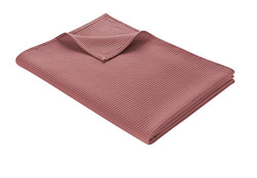 WOHNWOHL Tagesdecke 150 x 200 cm • Waffelpique leichte Sommerdecke aus 100% Baumwolle • Luftige Sofa-Decke vielseitig einsetzbar • Pflegeleichte Wohndecke • Baumwolldecke Farbe: Rosé