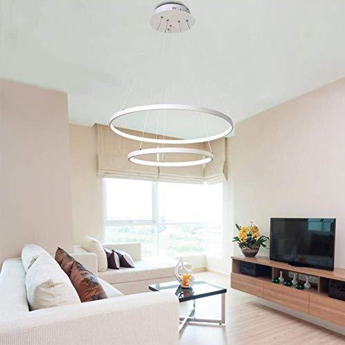 Belief Rebirth Lampadario Moderno Circolare a LED Lampada a Sospensione Regolabile - Lampada a Sospensione Moderna a soffitto Altezza 120 cm x 2 Anelli, 24W LED 6000K Luce Bianca (20 + 40 cm)
