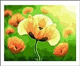Pintar por Numeros Adultos Niños Tulipán amarillo DIY Pintura por Números con Pinceles y Pinturas-16 * 20 Pulgadas, Sin Marco