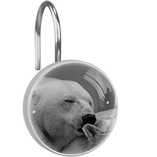 AITAI Ganchos para cortina de ducha, diseño de oso polar, a prueba de óxido, 12 unidades