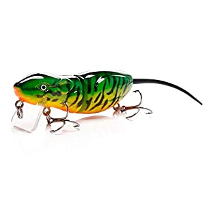 WFRH Gilding Rat Top Water Wake Lure10G 6Cm With Backup Soft Tail