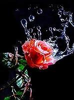 ダイヤモンドの絵画 5Dダイヤモンド絵画フルスクエアフラワーダイヤモンド刺繡バラモザイク黒赤ラインストーンの家の装飾アートの写真