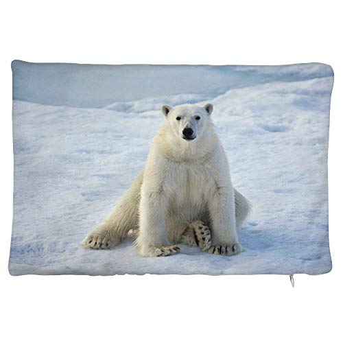 happygoluck1y Animals polar bears snow Velvet Rectangular Cushion Covers 30x50 Decorative Pillow Cases with Zipper for Sofa Teen Girls