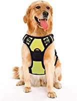 Save up to 30% on Pet Harness and other pet products