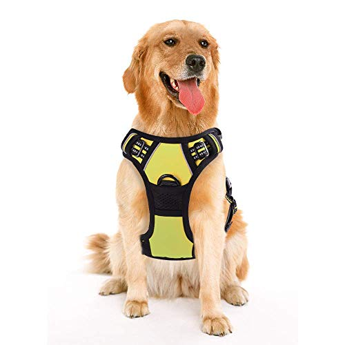 rabbitgoo Dog Harness, No-Pull Pet Harness with 2 Leash Clips, Adjustable Soft Padded Dog Vest, Reflective No-Choke Pet Oxford Vest with Easy Control Handle for Small Breeds, Green, S