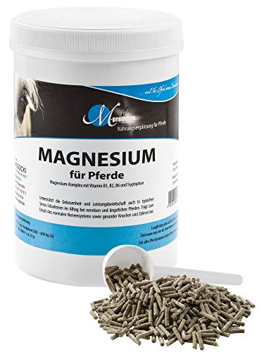 MIGOCKI Magnesium Pferd – 750 g – Premium Ergänzungsfuttermittel – Unterstützt die Gelassenheit und Leistungsbereitschaft von Pferden – Pellets