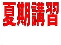 シンプル看板 「夏期講習 余白付(赤)」<スクール・塾・教室> Mサイズ 屋外可(約H60cmxW45cm)