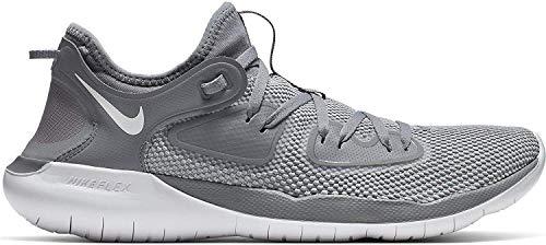 Nike Men's Flex RN 2019 Running Shoe (8.5, Cool Grey/Wolf Grey/White)