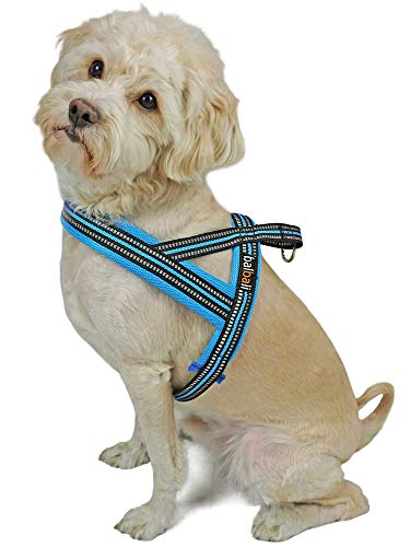 Dog Harness Easy Walk for Small Dogs Pug Life with Easy On and Off Reflective Vest and Padded Adjustable Gentle Lead(Blue,XS)