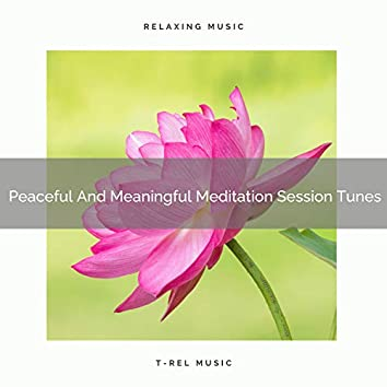 Peaceful And Meaningful Meditation Session Tunes