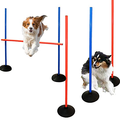 AKA Agility Training Set | Weave Pole & Hurdle|