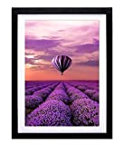 Mxtallup 16 x 20 Diamond Painting Frames Picture ,Display Pictures 14x18 Inch/ 35x45 cm with Mat or 16x20 Inch/40x50 cm Without Mat, 40x50cm Diamond Art Frame Wood Black (TYK005)