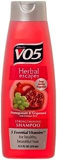 VO5 New 339902 Shampoo Pomegranate Bliss 12.5 Oz (6-Pack) Shampoo Wholesale Bulk Health & Beauty Shampoo Bud Vase