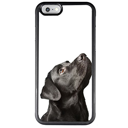 iPhone 6 6s Regular 4.7 inch Case Customized Durable Labrador Dog Case, Black Shock-Proof Protective Phone Case for iPhone 6 6s Regular 4.7 inch