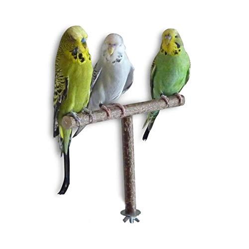 LACKINGONE Natur Sitzstangen für Vögel Naturholzstangen Vogelständer Papagei Sitzstangen Vogelsitzstange Vogelkäfig Zubehör für Vögel, Papageien, Wellensittich, Nymphensittich, Graupapageien