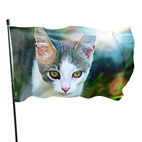 Bandera de jardín Gráficos digitales Cat Watch está mirando a los jóvenes Color vivo y resistente a los rayos UV Bandera de patio con doble costura Bandera de temporada Bandera de pared 150X90cm