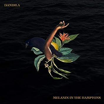 Melanin In The Hamptons