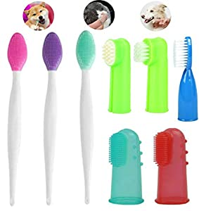 Best dog Toothbrush: Our Top Choice