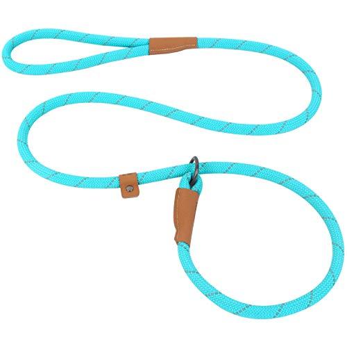Slip Lead Dog Leash, Reflective Mountain Climbing Rope Leash, Dog Training Leash – 5FT, 2 Sizes (Large, Turquoise)