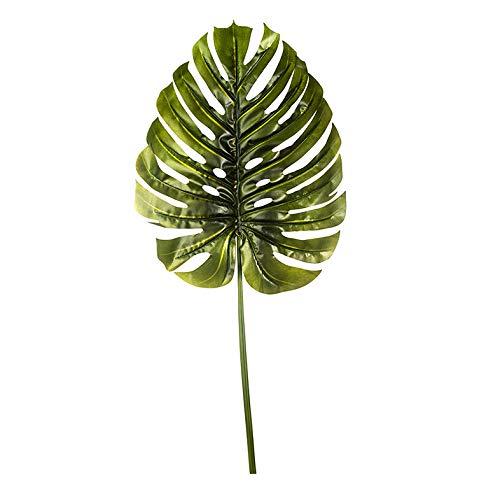 EUROCINSA Ref.69054C54 Hoja Costilla DE ADAN Verde, Caja de 6uds, 140cm