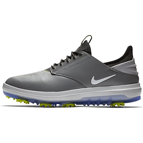 Nike Herren Mens Golf Perfrmance Golfschuhe, Grau (Gris 002), 41 EU