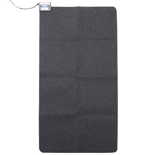 [山善] 空気をキレイにする ホットカーペット本体 1畳サイズ SUS-101 [メーカー保証1年]