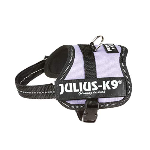 Julius-K9 Powerharness, 1, Purple