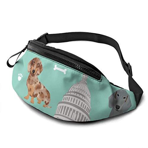 Sac banane unisexe décontracté DC Capitol Teckel Race de chien Mint Sac banane avec ceinture réglable pour course à pied, sport, escalade, voyage