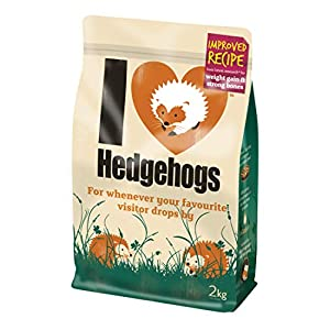 Hedgehog Food, I Love Hedgehogs