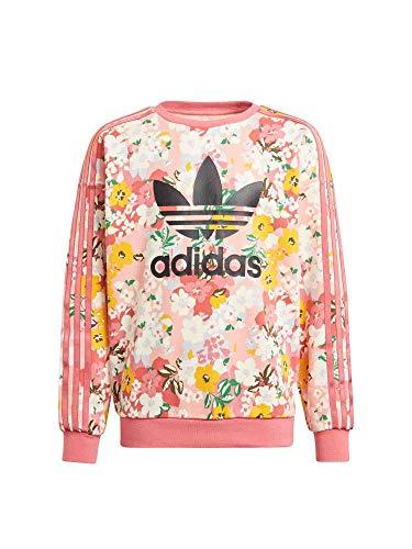 adidas Crew Suter Pulver, Trace Pink/Multicolor/Black, 13 años para Niñas